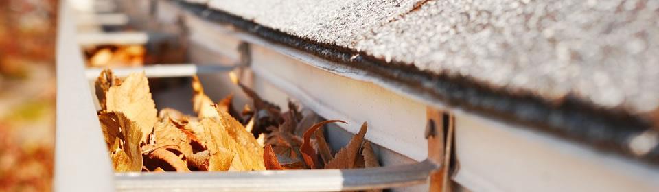 dakgoot met herfstbladeren